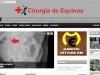 Cirurgia-Equinos-1