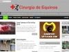 Cirurgia-Equinos-2